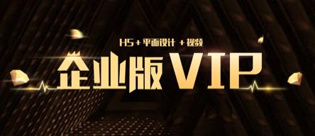 企业版本VIP